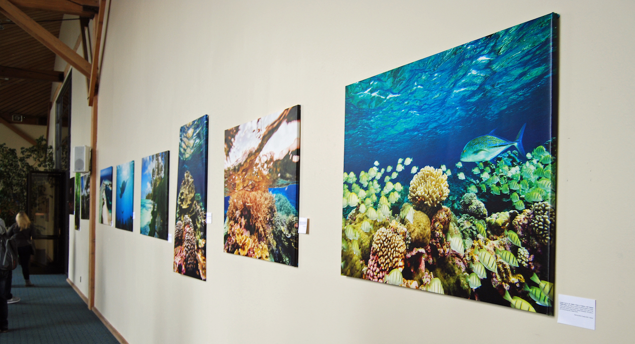 Photography Show Highlights Beauty of Marine Monuments