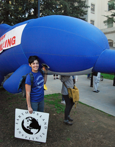Photo of Sumona at Sacramento demonstration against Trumps offshore oil drilling plan, holding up IMMP's inflatable blue dolphin.  Photo by Mark J. Palmer