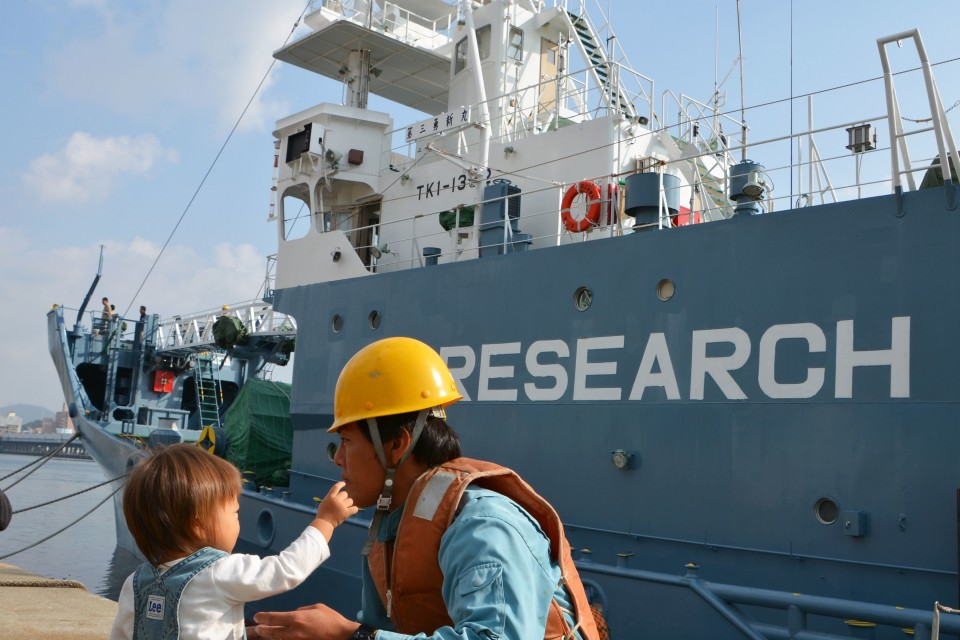 Japan to Propose IWC End Commercial Whaling Moratorium