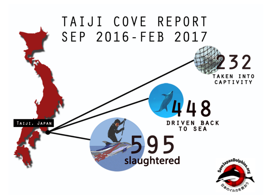Taiji's Dolphin Season Comes to an End